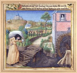 Mortifiement de vaine plaisance Metz ms1486a.jpg